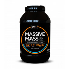 QNT Massive Mass 2700г